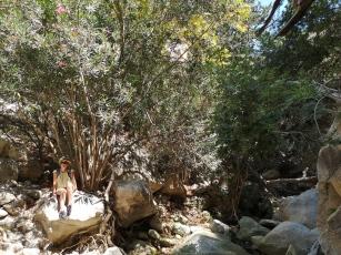 gorge agvas chypre 2