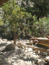 gorge agvas chypre 30